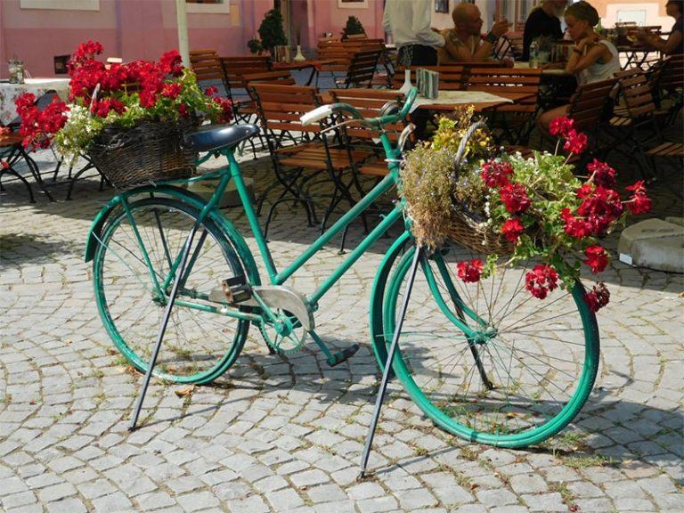 אופניים כעציץ טיול בטעם של עוד קא לה מאמא